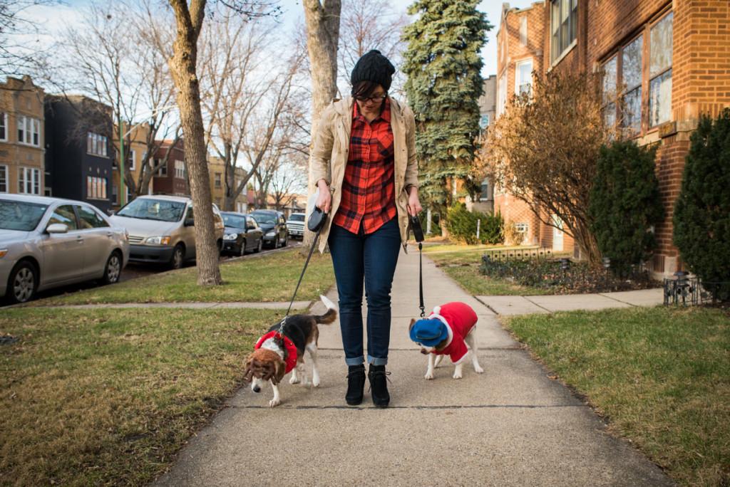 christmas-beagles-12-23-2014-03191