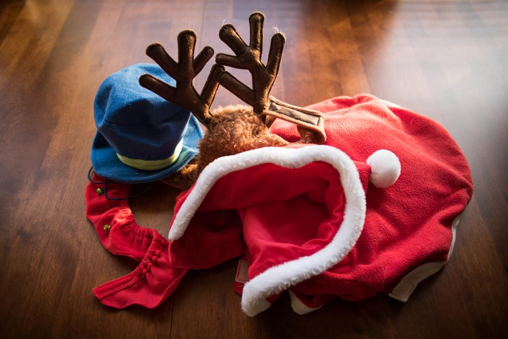 christmas-beagles-12-23-2014-03419
